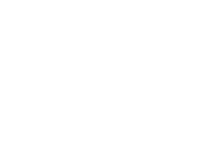 Working with people, place and the planning system